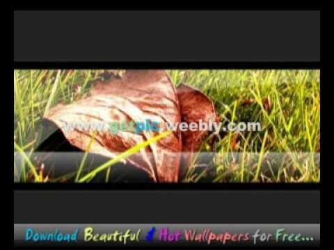 Xxx Mp4 Vista Actress Wallpapers Indian Girls Sex Pictures Wmv 3gp Sex