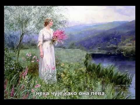 Каћуша- руска песма, превод на српски