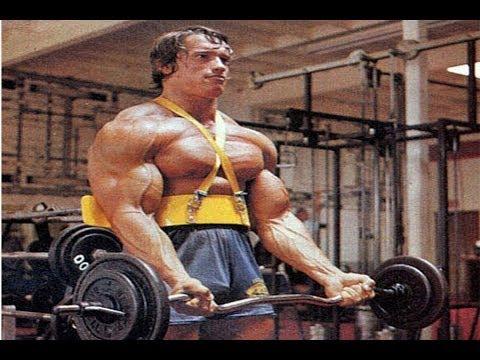Arnold Schwarzenegger Blueprint Trainer Mass Training Overview