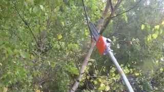 TIMBERPRO 5in1 Garden Multitool Chainsaw Cutting Demo