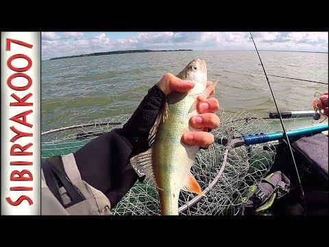 видео рыбалка на джиг с отводным поводком