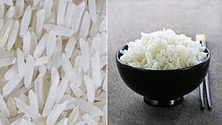 هل تعلم كيف تكتشف الأرز البلاستيكي المغشوش و الخطير على صحتك !