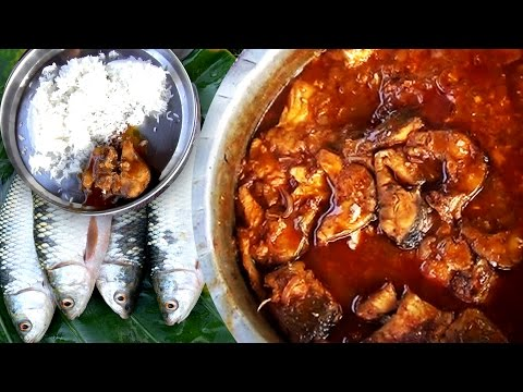 How to Make Fish Curry | Village Style Cooking of Fish Curry Recipes | Easy Way to Cook Fish Curry