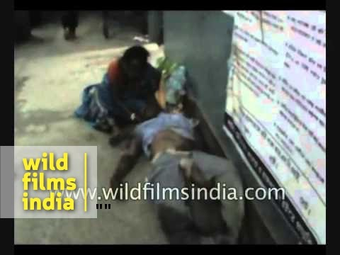Three dead, many injured in Burdwan bus accident - West Bengal