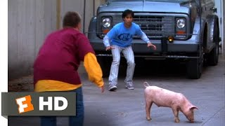 American Pie Presents Beta House (6/8) Movie CLIP - Parkour Pig Chase (2007) HD