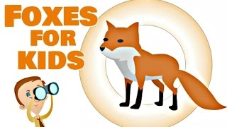 Foxes for Kids | Animal Facts and Information Video