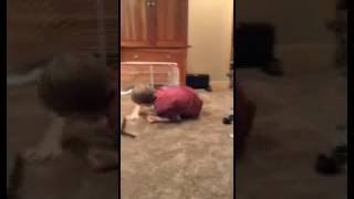 knockout short clip