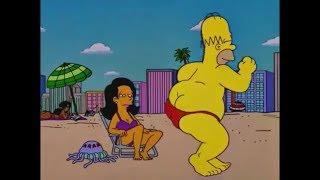 Los Simpson - Cumbia en Popurri