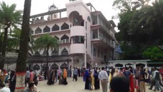 Jalali Kobutor at Shah Jalal Mazar