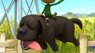 Alien Monkeys 🐵 Dog - Chameleon - Dog 2 - Funny Animation