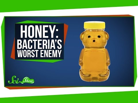 Honey Bacteria s Worst Enemy