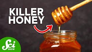 Honey: Bacteria's Worst Enemy