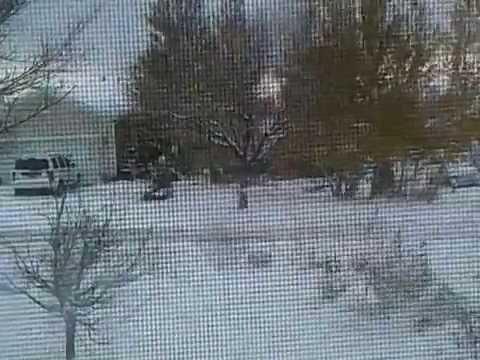 Blizzard Pt. 2