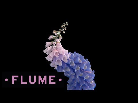 Flume - Helix Mp3