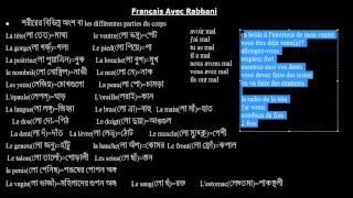 Français avec Rabbani TP n° 4 Doctor