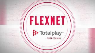 Flex Net. Facilita la implementación, operación y administración de las redes WAN