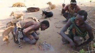 De caza con bosquimanos en Tanzania