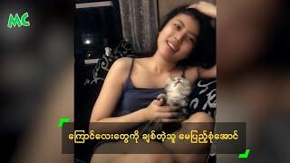 Myanmar Cat Lover, May Pyae Sone Aung - ေၾကာင္ေလးေတြကို ခ်စ္တဲ့သူ