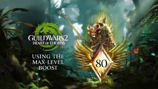 Learn to Use the Level 80 Boost