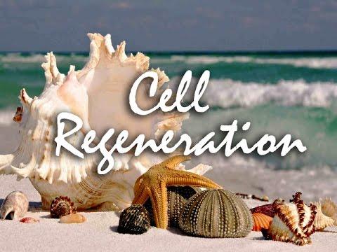Solfeggio Frequency 528 Hz Mending DNA: Cell Regeneration, Skin Repair, Immune System