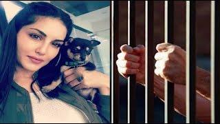 জেলে যেতে হচ্ছে সানি লিওনকে - কিন্তু কেন ?? Sunny Leone Latest News