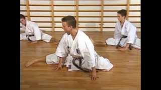 Karaté - Dynamique de base et katas avec Mickaël Milon