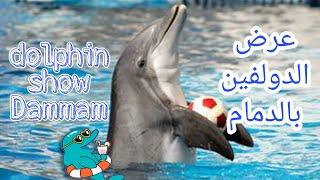 عرض رائع للـ دولفين في المسبح - بـ قرية الدولفين بـ الدمام dolphin show Dammam