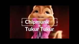 Tukur Tukur Chipmunk Version Dilwale Movie Song 2015 YouTube