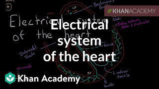 Electrical system of the heart | Circulatory system physiology | NCLEX-RN | Khan Academy