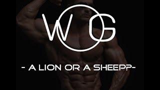 WORKOUT MOTIVATION - A Lion Or A Sheep?-