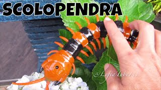 Innovation Giant Scolopendra Creepy Crawlers Toys @Lifiatubehd