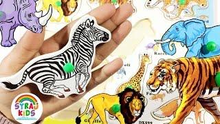 Animals Arabic & English | الحيوانات بالعربية والإنجليزية | Syraj KIDS