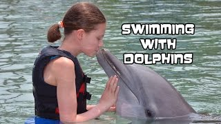 Swimming With Dolphins | Dolphin Quest Hawaii | Bethany G Vlog