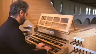 Toccata & fugue in D minor - J.S Bach par Henri-Franck Beaupérin