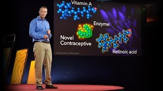 How a male contraceptive pill could work   John Amory