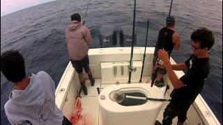 Lucky B Offshore Fishing 2013