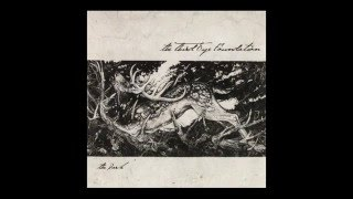 The Third Eye Foundation - The Dark (Full Album)
