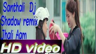 New Santhali HD Video dj jhali aam