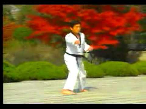 Xxx Mp4 8 Taekwondo Poomsae Taegeuk Pal Jang WTF 3gp Sex