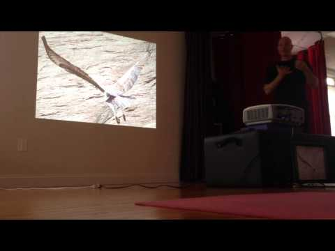 Rolf Pechukas ~ Yoga for the UPPER BACK, 2015 ~ Sternum