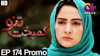 Kambakht Tanno - Episode 174 Promo | A Plus ᴴᴰ Drama | Shabbir Jaan, Tanvir Jamal, Sadaf Ashaan