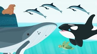 Kids Learn About Ocean Animals Name And Sound - Baby Play Fun Games For Toddlers and Prechool