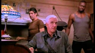 Naked Gun 33⅓: The Final Insult: Nick
