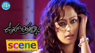 Kaveri Jha And Vamsi Krishna Romantic Song- Ooha Chitram Movie || Romance Of The Day