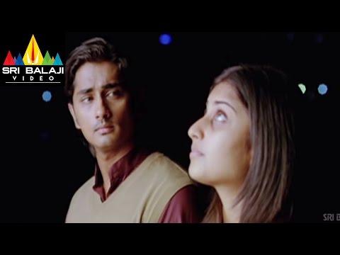 Xxx Mp4 Oye Movie Shamili Celebrating Siddharth Birthday Scene Siddharth Shamili Sri Balaji Video 3gp Sex