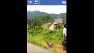 Download film fra jw.org til iPhone