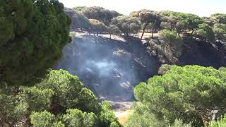 02 carboneria incendio mazagon 210817