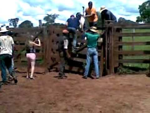 Nicolle Parreira montando em touro