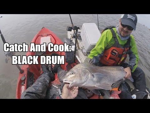 Catch & Cook Ep 15: BLACK DRUM
