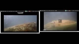 【水中実況 Live Streaming】ニコ生2カメラを同時中継【ニコ生同時配信】